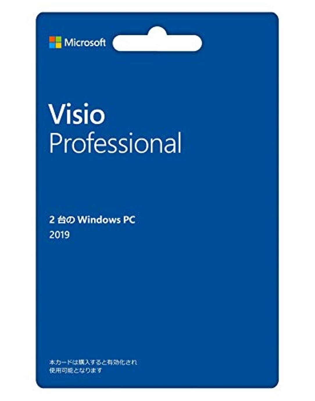 推進力まつげマラウイMicrosoft Visio Professional 2019(最新 永続版) カード版 Windows10 PC2台