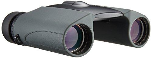 Nikon(ニコン)『スポーツスターEX10×25DCF』