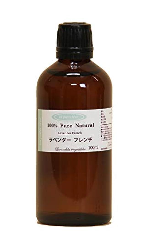 宿題ナビゲーションミニラベンダーフレンチ 100ml 100%天然アロマエッセンシャルオイル(精油)