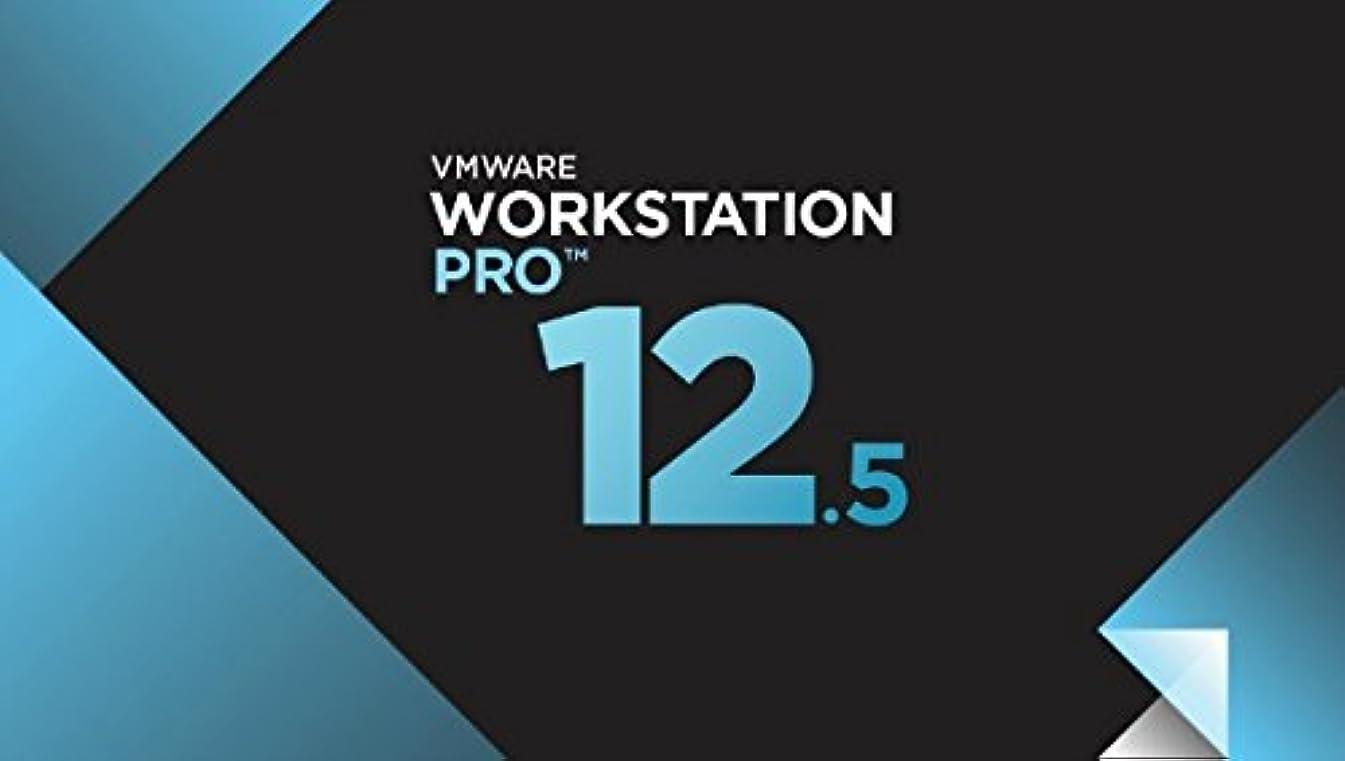 準備するパキスタン効率VMware Workstation 12.5 (1 PC- Lifetime Validity) Online Key Delivery [Download: Registration Code] Windows …