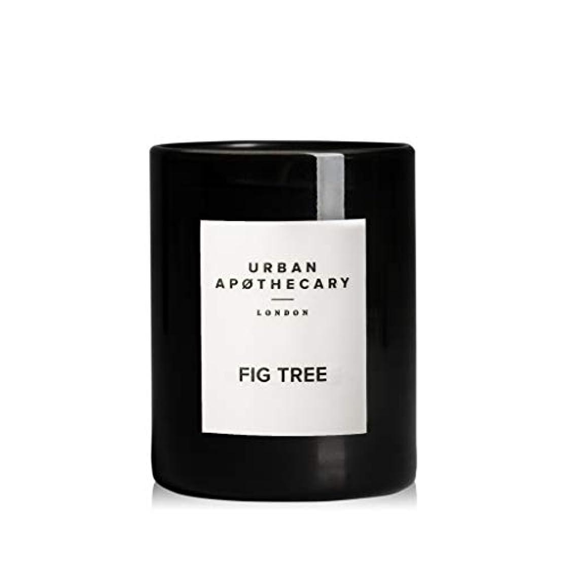 荒らす協力するヒギンズURBAN APOTHECARY キャンドル(小)FIG TREE 70g