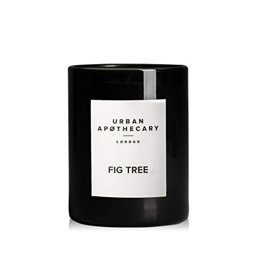 韓国組立条件付きURBAN APOTHECARY キャンドル(小)FIG TREE 70g
