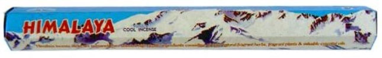 コーデリア素子鋼ヒマラヤ 3個セット