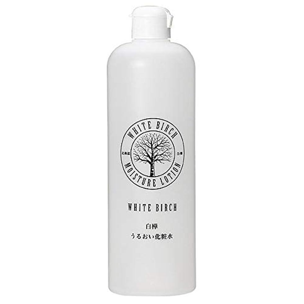圧縮された給料ディベート北海道アンソロポロジー 白樺うるおい化粧水 500mL
