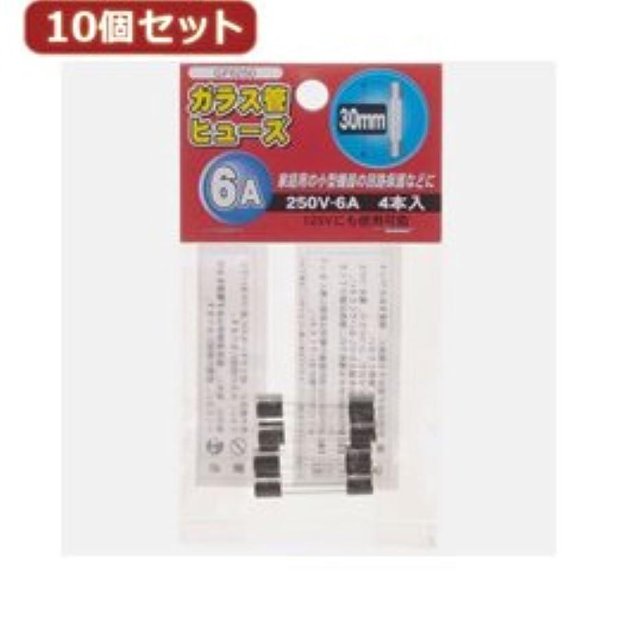 良いパントリー再撮り【まとめ 4セット】 YAZAWA 10個セットガラス管ヒュ-ズ30mm 250V GF6250X10