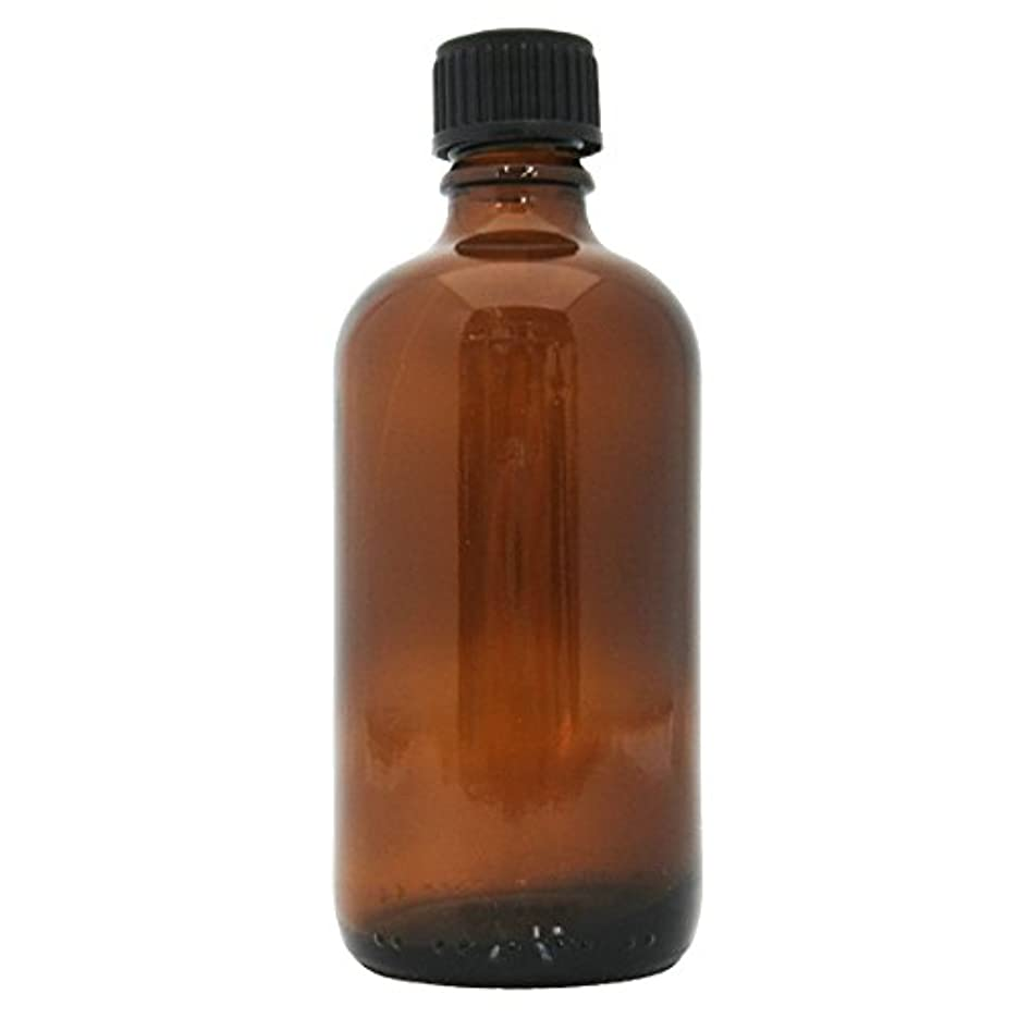 疫病もっともらしい画家茶色遮光瓶 100ml (ドロッパー付)