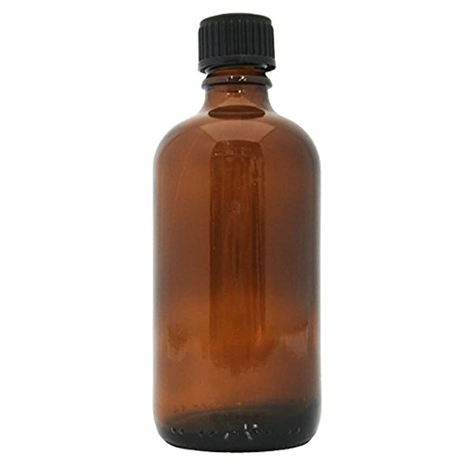 横たわる任意孤児茶色遮光瓶 100ml (ドロッパー付)