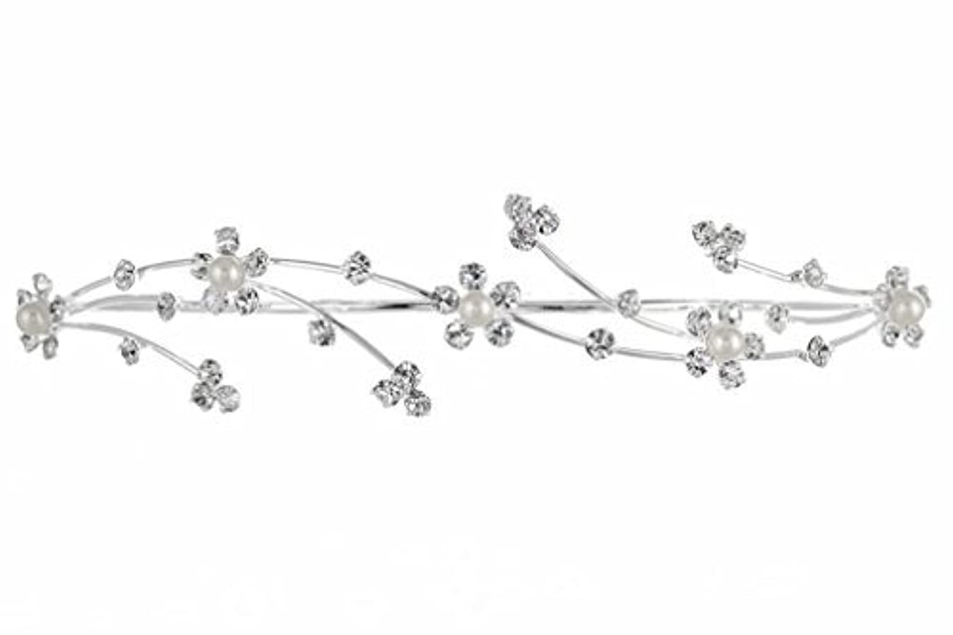 属性誕生日痴漢Elegant Flower Girl Bridesmaid Tiara Hair Comb - Silver Plated Faux Pearls T160 [並行輸入品]