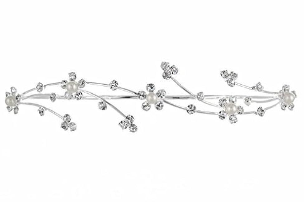 眠っている群衆挨拶するElegant Flower Girl Bridesmaid Tiara Hair Comb - Silver Plated Faux Pearls T160 [並行輸入品]
