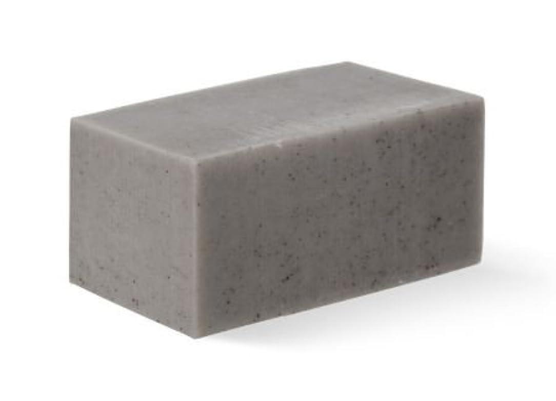 テクスチャー醜いフルート[Abib] Facial Soap grey Brick 100g/[アビブ]フェイシャルソープグレー ブリック100g [並行輸入品]
