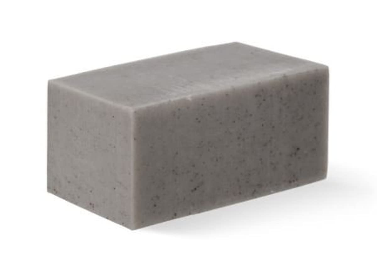 アーサー名誉カセット[Abib] Facial Soap grey Brick 100g/[アビブ]フェイシャルソープグレー ブリック100g [並行輸入品]