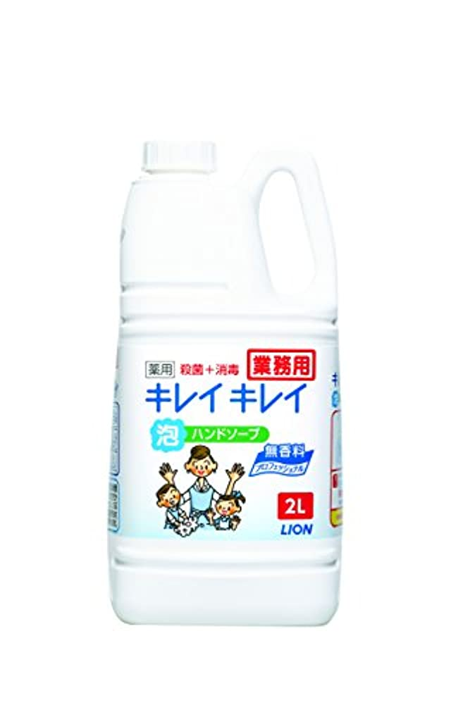 保存文明ダイアクリティカル【大容量】キレイキレイ 薬用泡ハンドソープ プロ無香料2L