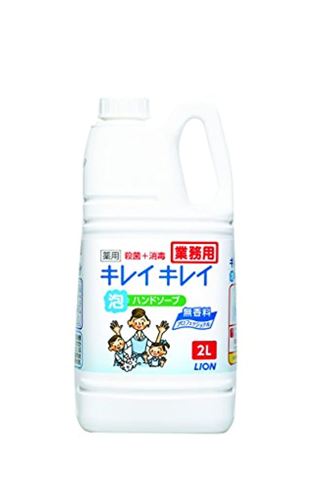 ハンディキャップ植物学人種【大容量】キレイキレイ 薬用泡ハンドソープ プロ無香料2L