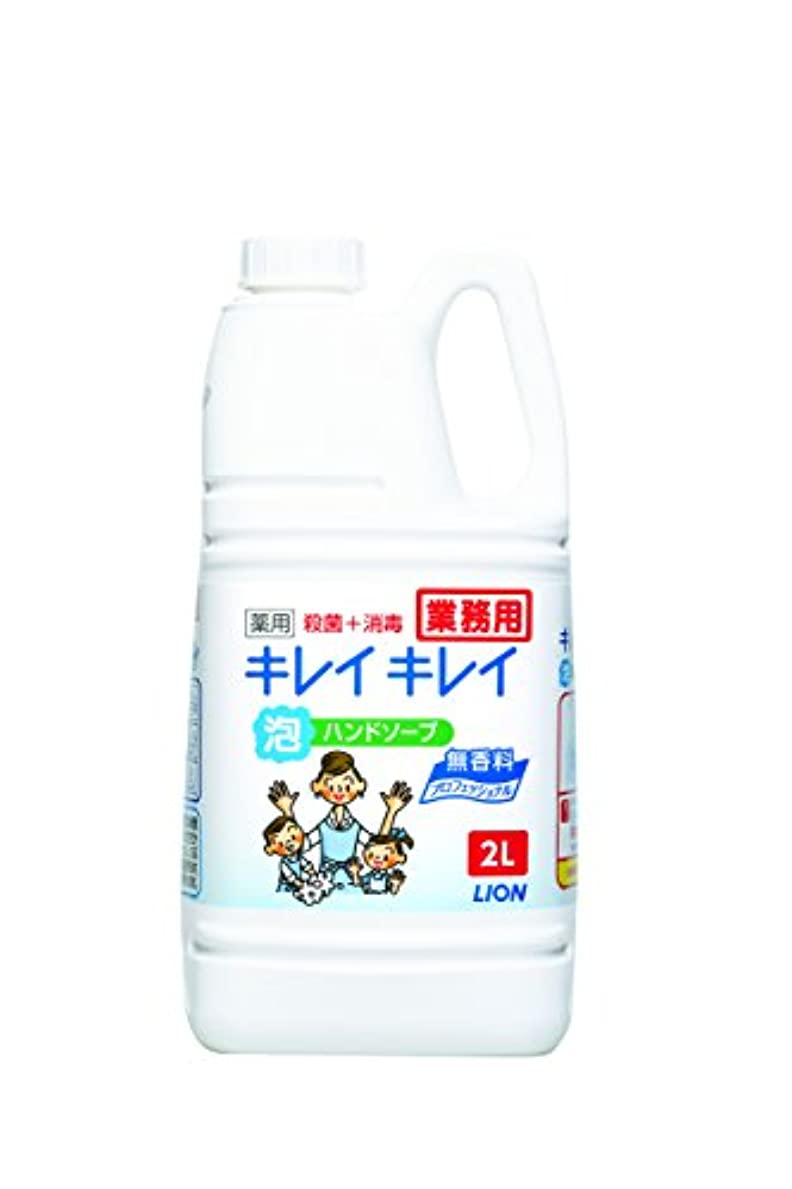 その後船尾腐った【大容量】キレイキレイ 薬用泡ハンドソープ プロ無香料2L