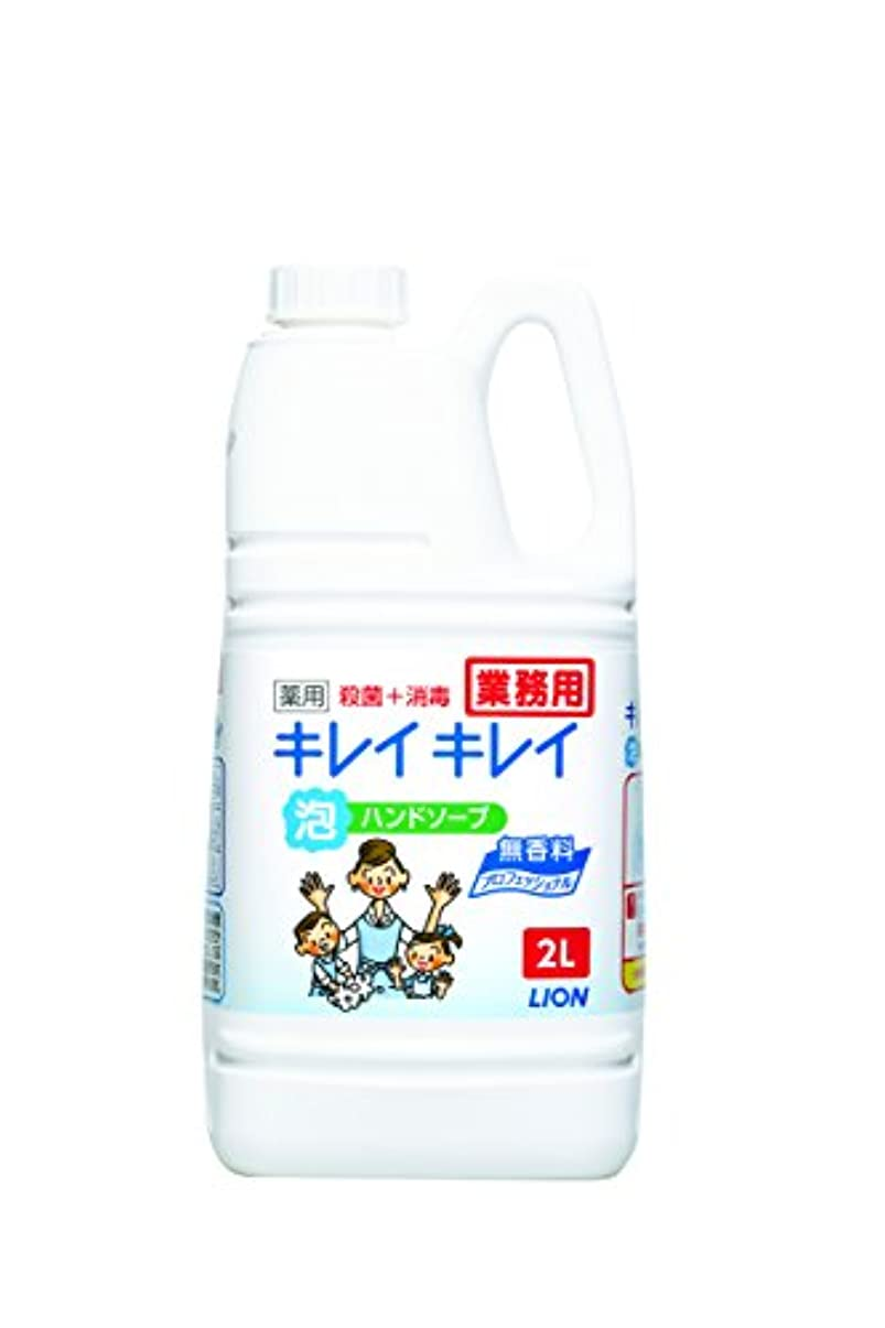 ファンタジー恥言及する【大容量】キレイキレイ 薬用泡ハンドソープ プロ無香料2L