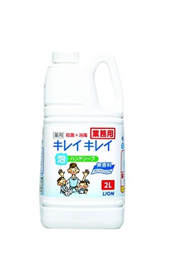 壊滅的なエキサイティングちょうつがい【大容量】キレイキレイ 薬用泡ハンドソープ プロ無香料2L