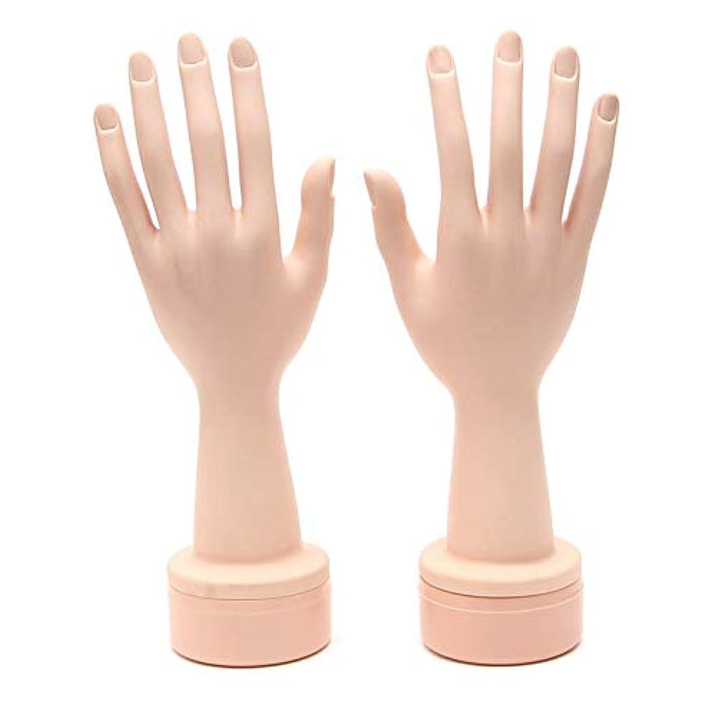 エアコン永久にゾーンネイル練習用ハンドマネキン(両手) ハンドマネキン 柔軟性 ネイル練習用 撮影用 ネイルチップ差し込み式