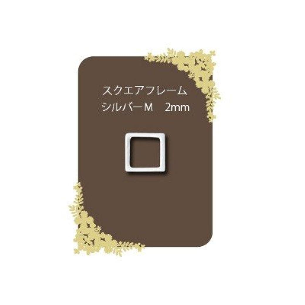 海洋の豆優れましたシャルロン メタルフレーク スクエアフレーム シルバー M