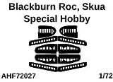 エアワンホビー 1/72 ブラックバーン スクア/ロック コントロールサーフェイス 塗装マスクシール (スペシャルホビー用) プラモデル用マスキングシール AOHF72027