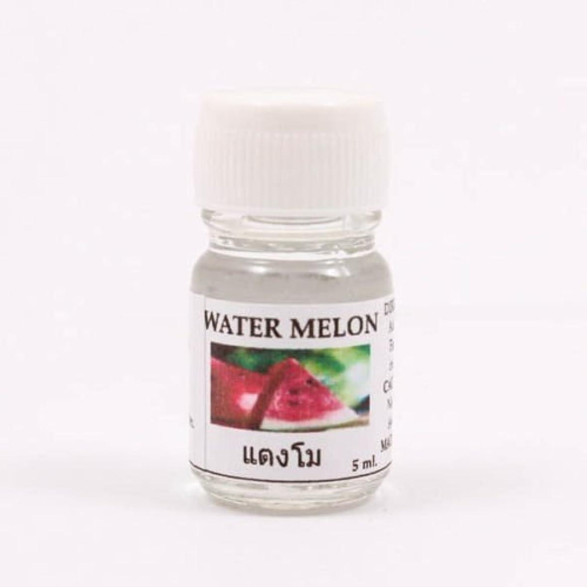 気を散らす布不良品6X Water Melon Aroma Fragrance Essential Oil 5ML Diffuser Burner Therapy