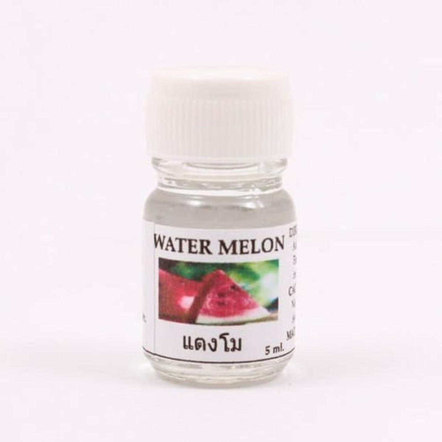 尊敬するメドレー変更6X Water Melon Aroma Fragrance Essential Oil 5ML Diffuser Burner Therapy