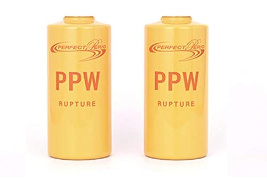 炭素味投資するパーフェクトペリオ 2本入り