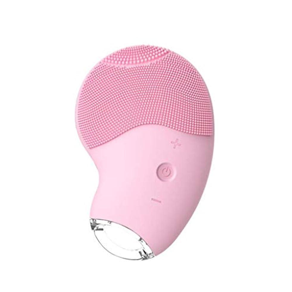 計算可能化学ポーン洗顔料、クレンジング器具、シリコンクレンジングブラシマッサージャー、USBパワーインターフェース充電、ディープクレンジング、なめらかな肌、肌をきれいにし、メラニンを軽減