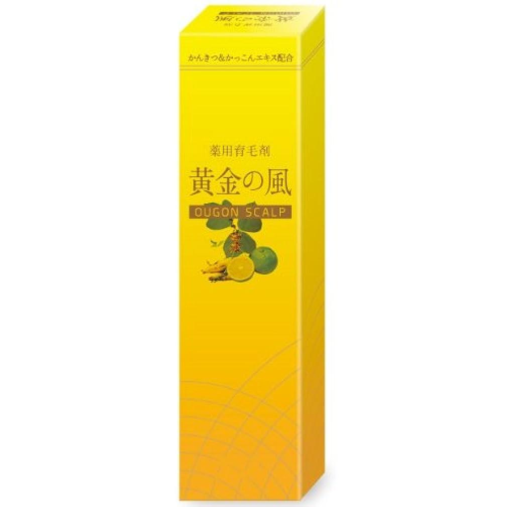 貼り直す浴室スクワイア黄金の風 120ml 【6本セット】