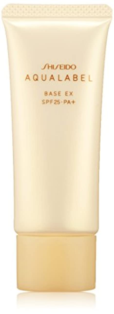 ビルダー適切な他にアクアレーベル 明るいつや肌ベース (SPF25?PA+) 25g