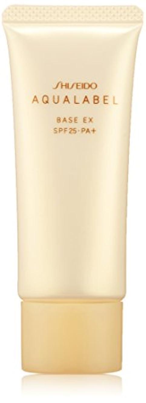 アンペアオズワルド北極圏アクアレーベル 明るいつや肌ベース (SPF25?PA+) 25g