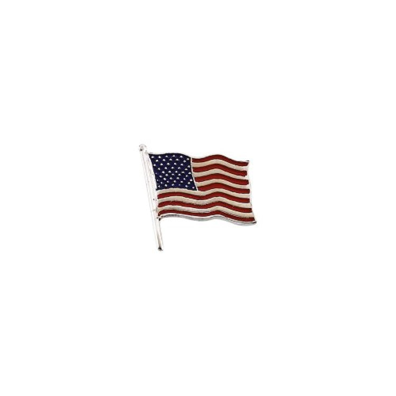 K14イエローゴールドアメリカの国旗ラペルピン17.5x17mm色