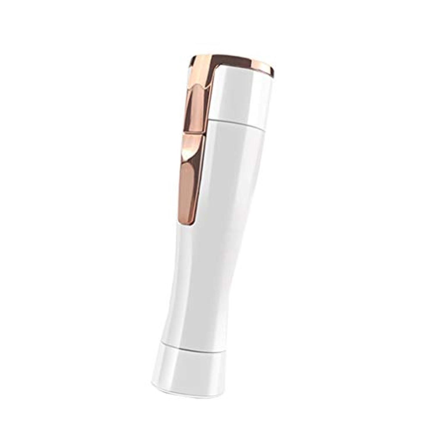 滴下複製意味のあるコードレス多機能ウェットシェーバー 男性と女性のシェービングアーマーアーティファクトシェービングプライベートパーツ専用シェービングナイフに電気 (Color : B)