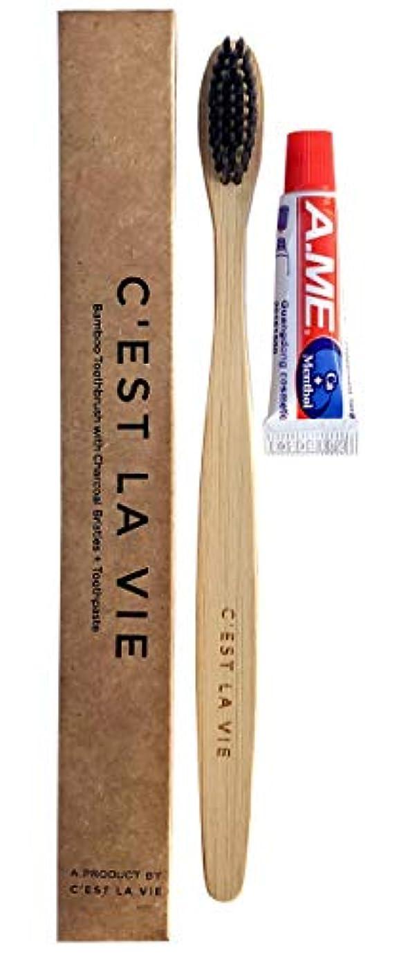 失望むき出し進化する10 BULK Pack - Natural Bamboo Charcoal Toothbrush + Toothpaste Kit by C'est La Vie - Individually Packaged in...