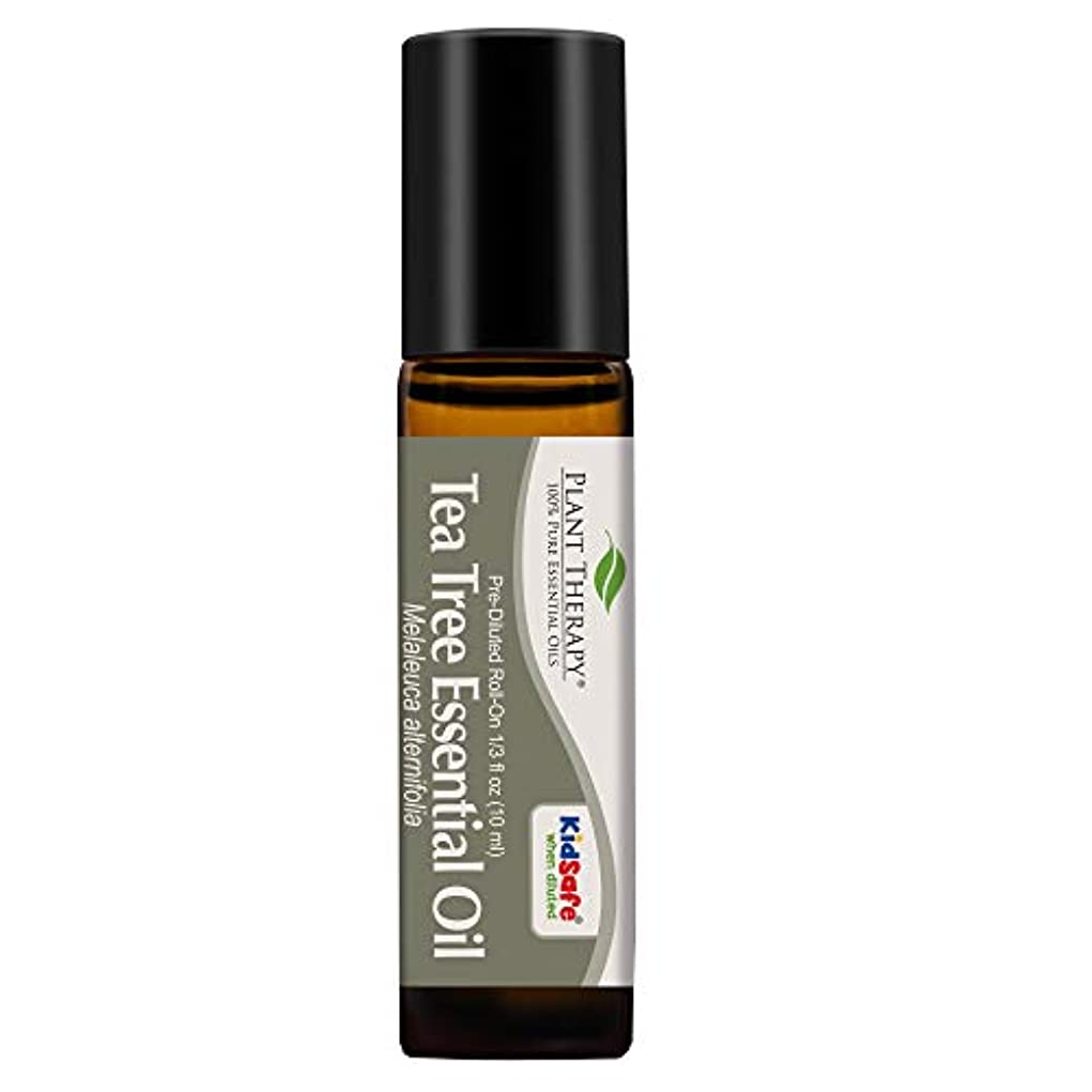 精査する専門化する露Plant Therapy Tea Tree Pre-Diluted Roll-On 10 ml (1/3 fl oz) 100% Pure, Therapeutic Grade