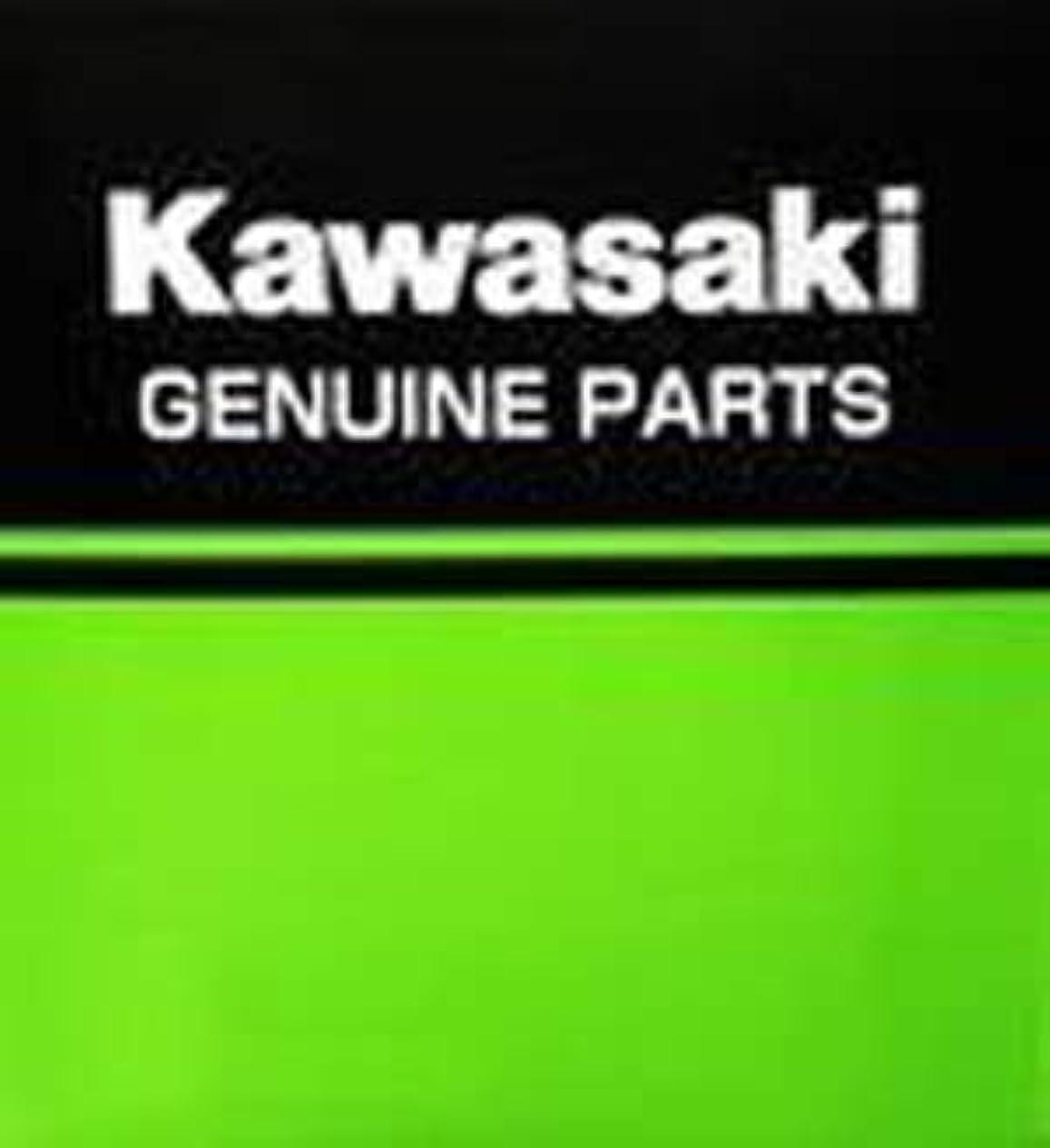 可能にする賛美歌憂鬱なKawasaki 2020年 Ninja1000SX パニアケースカバー(左右セット) パールブリザードホワイト J99994042254X 16500