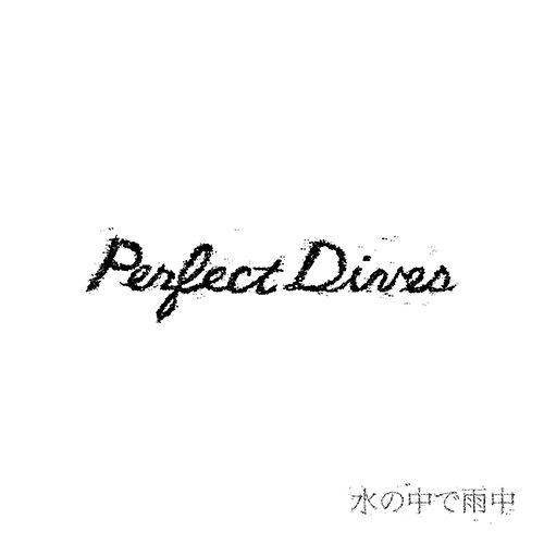 PERFECT DIVES