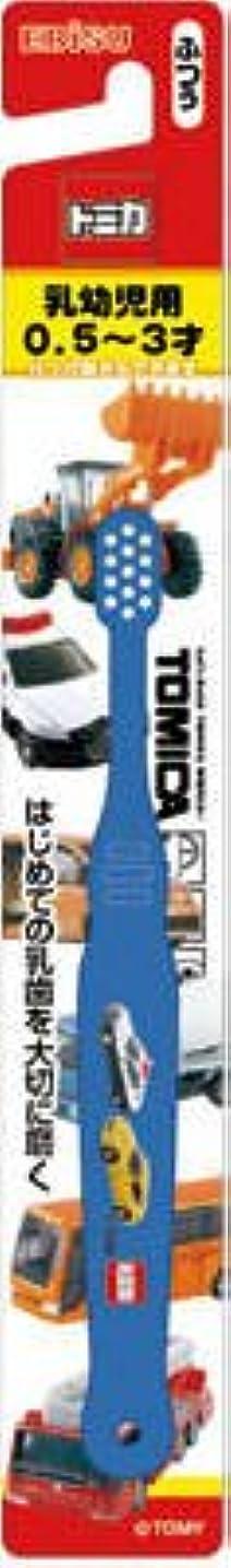 章殺すバラ色エビス トミカ歯ブラシ 0.5~3才 1本×360点セット (4901221070000)