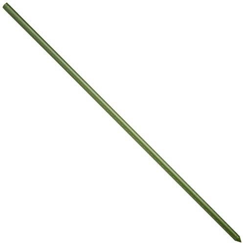 イボ竹支柱