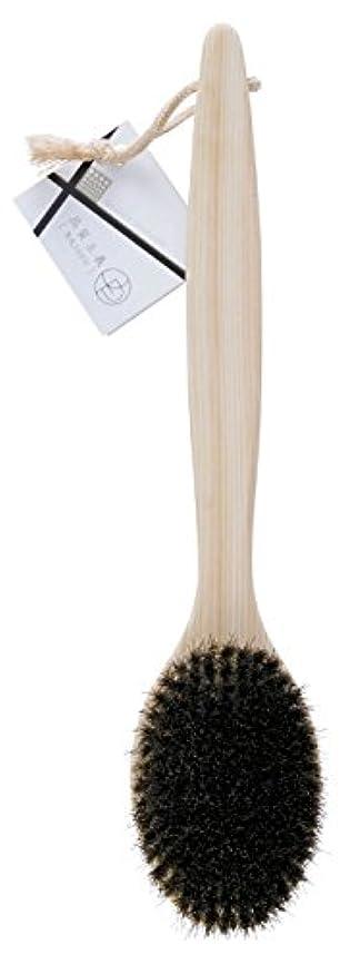 多様なデッドグラフィックオーエ ボディ ブラシ 天然木 約35×7.5×4cm 品質主義 ヒノキ 馬毛