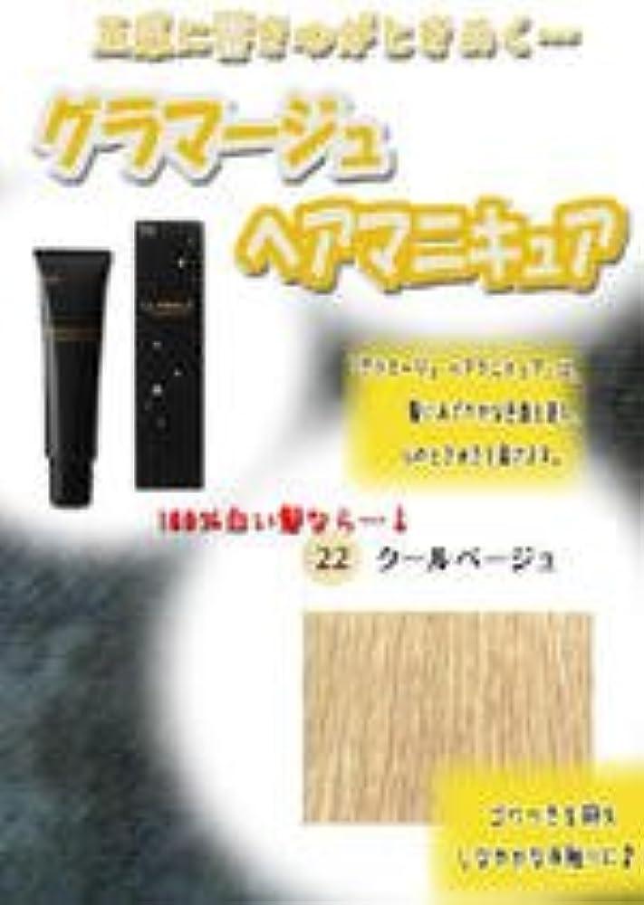 最後にプット音HOYU ホーユー グラマージュ ヘアマニキュア 22クールベージュ 150g 【グロス系】
