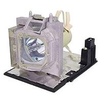 交換用の電球/ランプ51429-g交換用電球