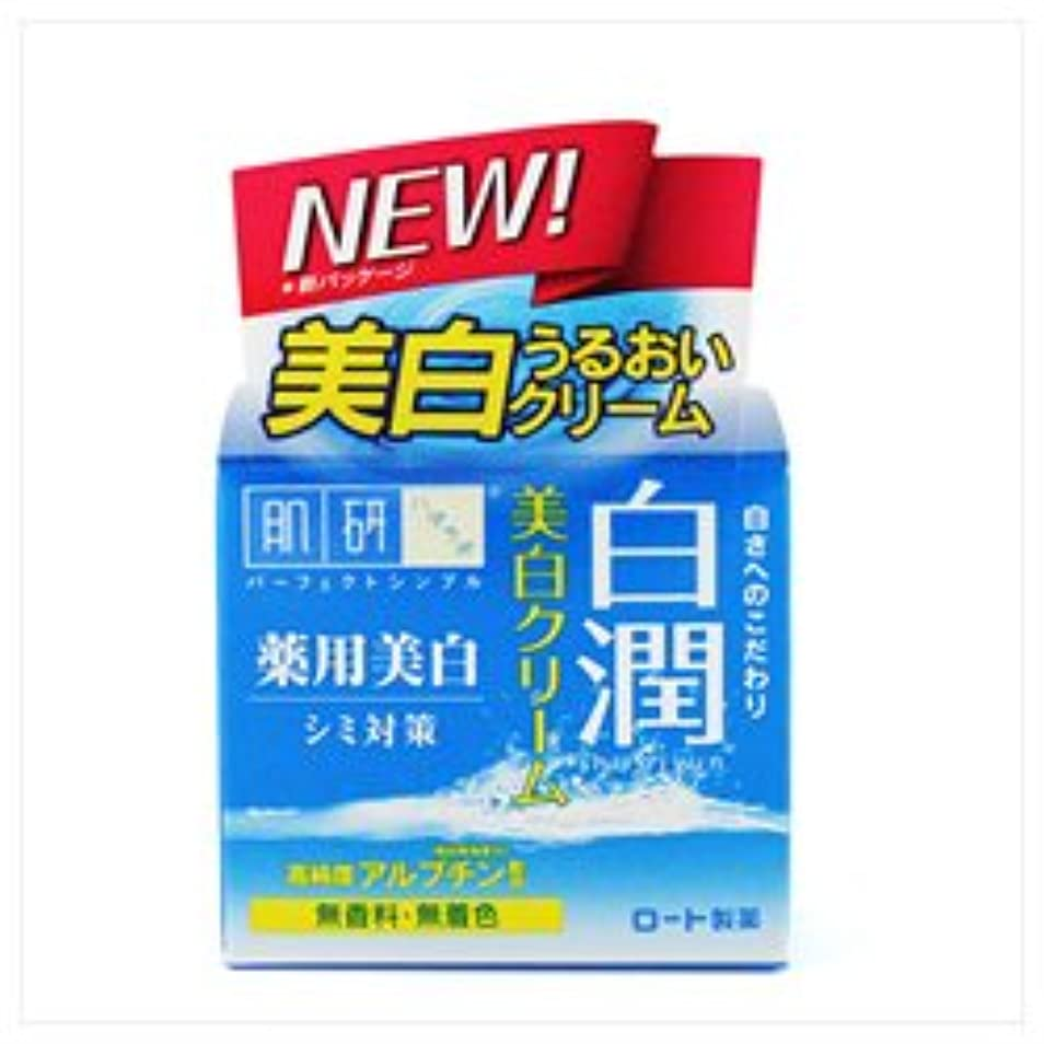 膨らませる急襲フラグラント【ロート製薬】肌研 白潤薬用美白クリーム 50g(医薬部外品) ×3個セット