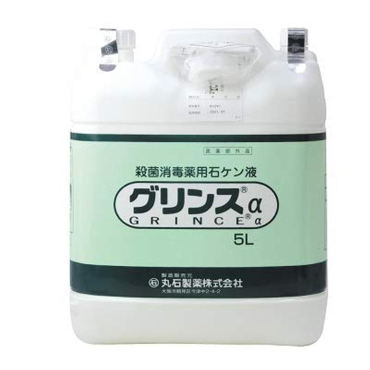 納屋キャリッジ予防接種【丸石製薬】グリンス 5L