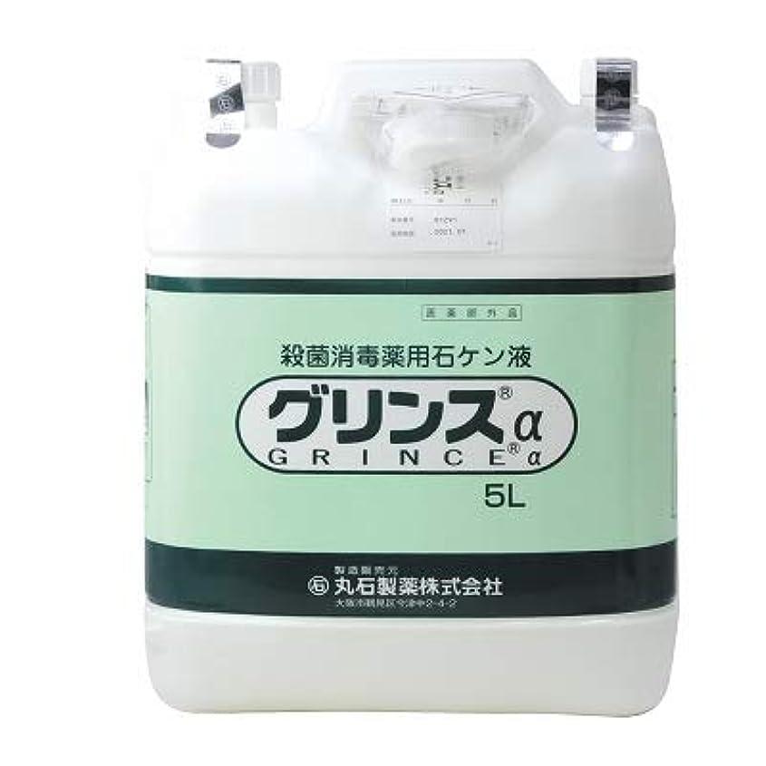 ターゲットキャメルモンク【丸石製薬】グリンス 5L