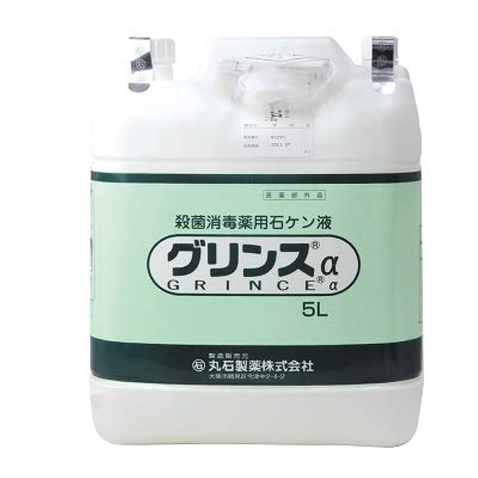 フリースキネマティクス腐敗した【丸石製薬】グリンス 5L