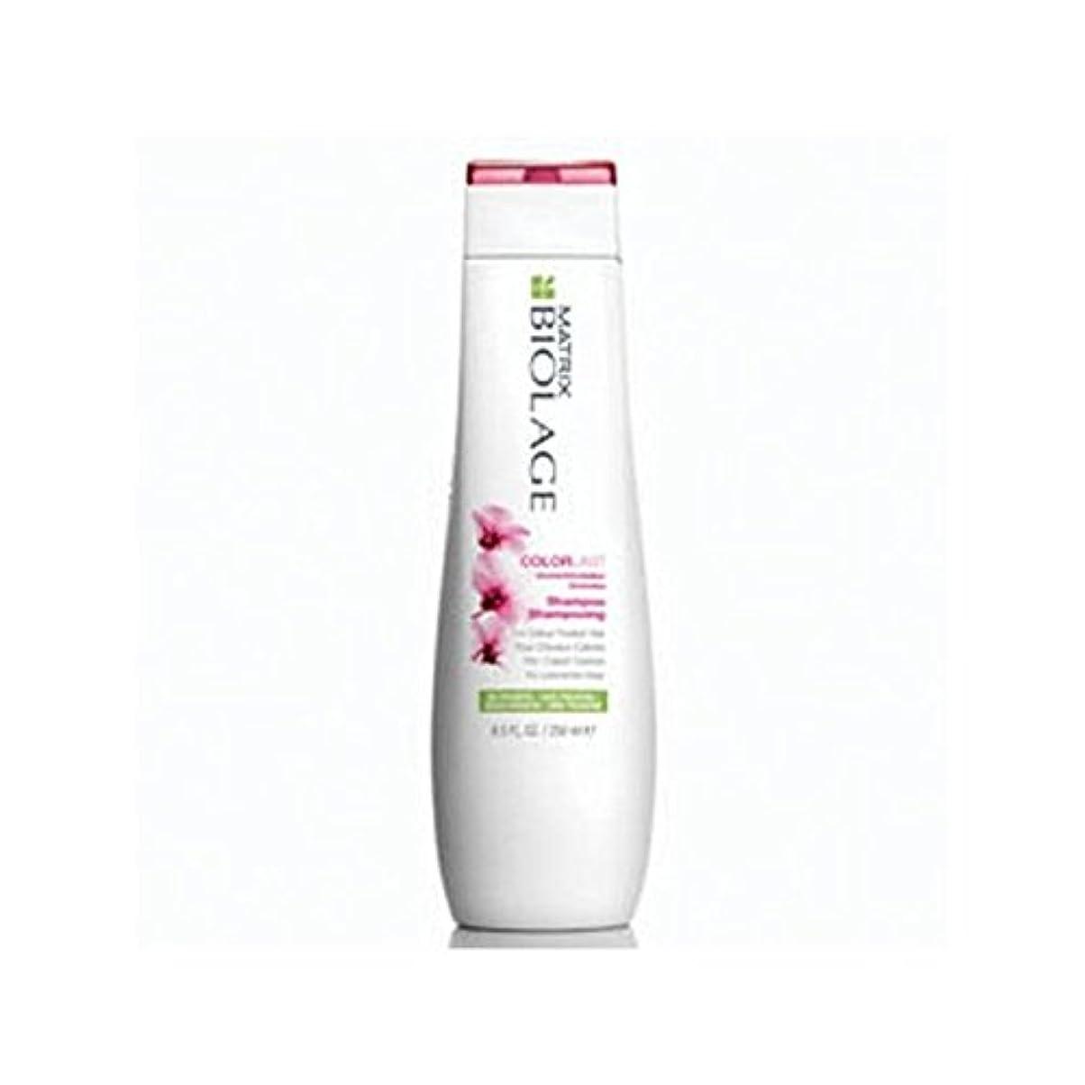 新しい意味孤児企業Matrix Biolage Colorlast Shampoo (250ml) (Pack of 6) - マトリックスバイオレイジのシャンプー(250ミリリットル) x6 [並行輸入品]