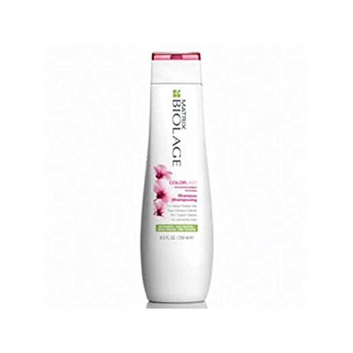 区別するバラバラにするセレナMatrix Biolage Colorlast Shampoo (250ml) (Pack of 6) - マトリックスバイオレイジのシャンプー(250ミリリットル) x6 [並行輸入品]