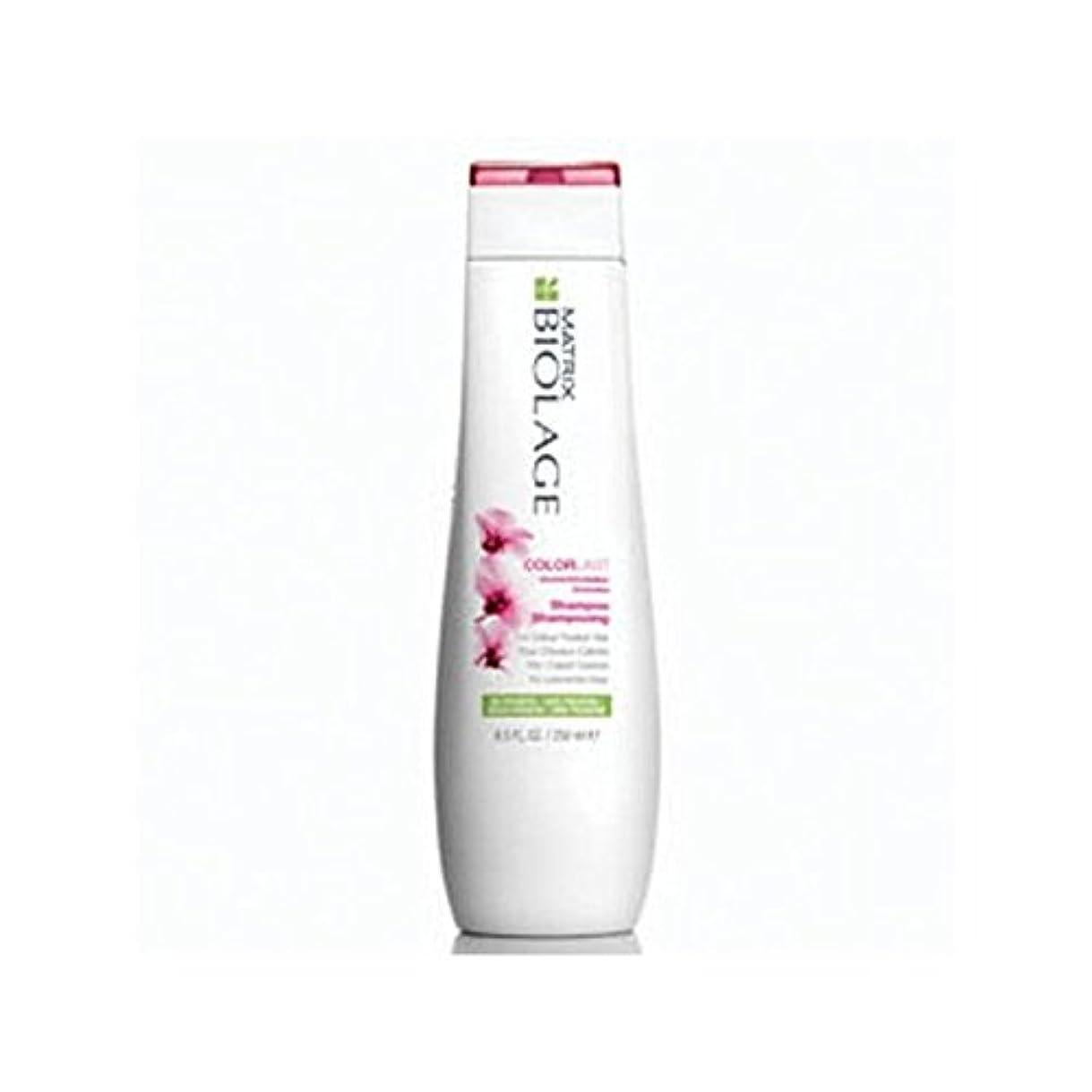 入札死にかけている傘Matrix Biolage Colorlast Shampoo (250ml) (Pack of 6) - マトリックスバイオレイジのシャンプー(250ミリリットル) x6 [並行輸入品]