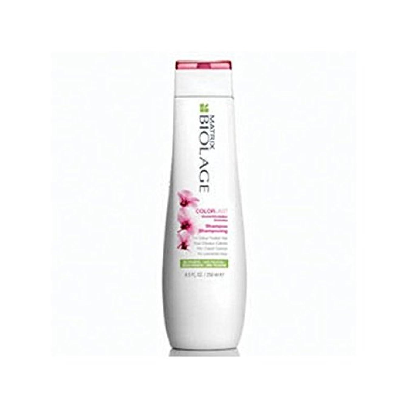 裏切り者慣習火山学者Matrix Biolage Colorlast Shampoo (250ml) (Pack of 6) - マトリックスバイオレイジのシャンプー(250ミリリットル) x6 [並行輸入品]
