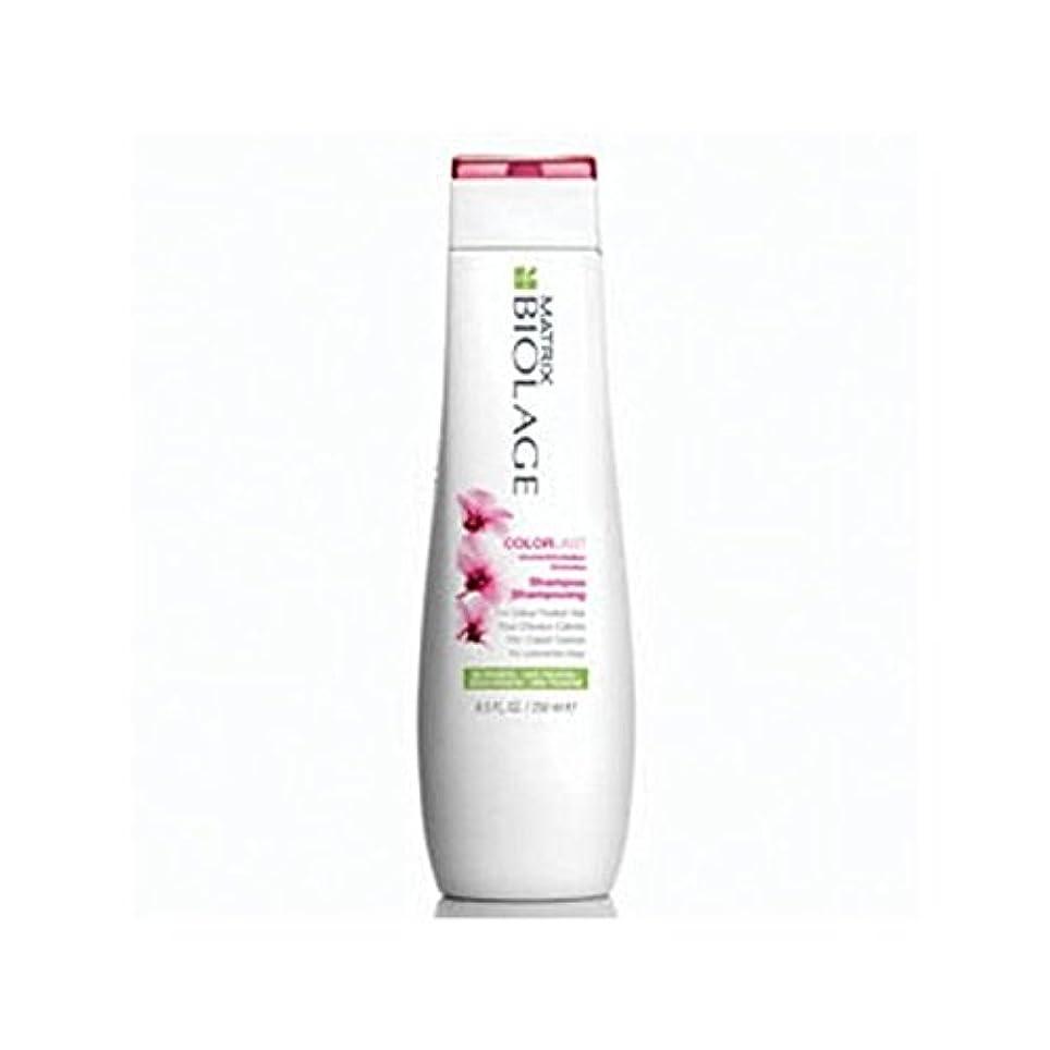 予想する墓地冷蔵庫Matrix Biolage Colorlast Shampoo (250ml) (Pack of 6) - マトリックスバイオレイジのシャンプー(250ミリリットル) x6 [並行輸入品]
